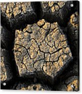 Cracked, Dried Out Mud, Mokolodi Nature Acrylic Print