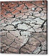 Cracked Earth Acrylic Print