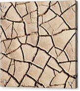 Cracked Earth On Desert Floor Bed Acrylic Print
