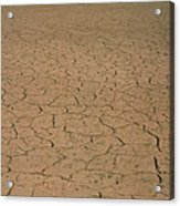 Cracked Mud Bed Of Aral Sea Acrylic Print
