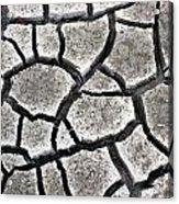 Cracked Mud Acrylic Print
