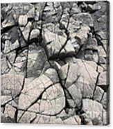 Cracked Rocks On Shore Acrylic Print