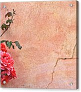 Cracked Wall And Rose Acrylic Print