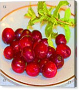 Cranberries And Mint Acrylic Print