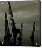 Cranes Acrylic Print