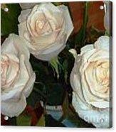 Creamy Roses II Acrylic Print