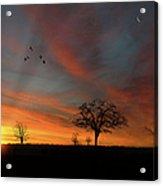 Created Sunset Acrylic Print