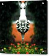 Creation 202 Acrylic Print