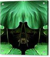 Creation 72 Acrylic Print