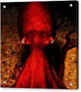Creatures Of The Deep - The Octopus - V4 - Red Acrylic Print