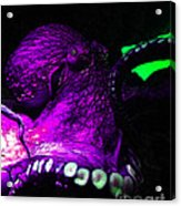 Creatures Of The Deep - The Octopus - V6 - Violet Acrylic Print
