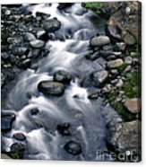 Creek Flow Panel 3 Acrylic Print