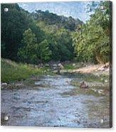 Creek Near Camp Verde  9107 Acrylic Print