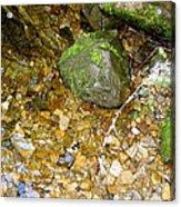 Creek Stones Acrylic Print
