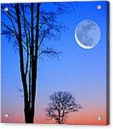 Crescent Through Trees Acrylic Print