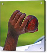 Cricket Anyone Acrylic Print