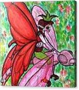 Crimson Wings Acrylic Print