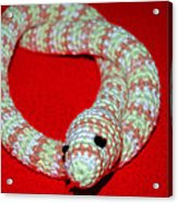 Crochet Snake In Red Acrylic Print