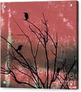 Crows The Watcher Acrylic Print by Sacred  Muse