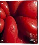 Crunchy Red Pepper Acrylic Print