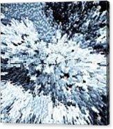 Crystal Flowers Acrylic Print