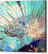 Crystal Pastel Blooms Acrylic Print