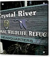 Crystal River Acrylic Print