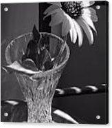Crystal Sunflower Acrylic Print