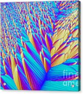 Crystal Vitamin C Acrylic Print