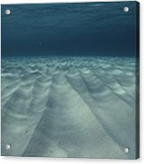 Current-sculpted Ripples In The Sandy Acrylic Print