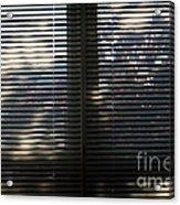 Curtains Acrylic Print