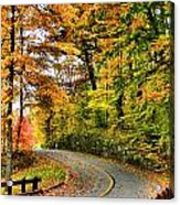 Curve In The Road Acrylic Print
