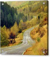 Curve Mountain Road With Autumn Trees Acrylic Print by Utah-based Photographer Ryan Houston