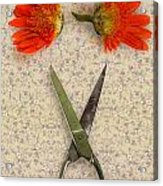 Cutting Flowers Acrylic Print