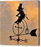 Cycling Pig Acrylic Print