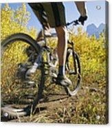 Cyclist Rides Mountain Bike Among Trees Acrylic Print
