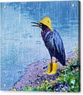 Damn Rain Acrylic Print by Tracey Tilson