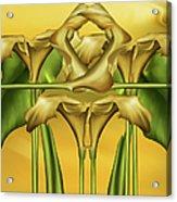Dance Of The Yellow Calla Lilies II Acrylic Print