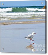 Dancing On The Beach Acrylic Print