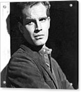 Dark City, Charlton Heston, 1950 Acrylic Print by Everett