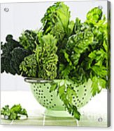 Dark Green Leafy Vegetables In Colander Acrylic Print by Elena Elisseeva