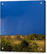 Dark Storm Over The Everglades Acrylic Print