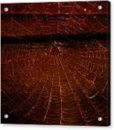 Dark Web Acrylic Print