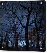 Darkness Acrylic Print