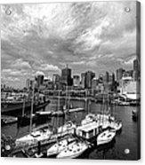 Darling Harbor- Black And White Acrylic Print