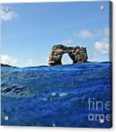 Darwin's Arch By Sea Level Acrylic Print