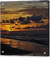 Dawn Of A New Year Acrylic Print