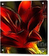 Day Lily Fractal Acrylic Print