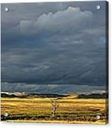 Dead Tree At Dusk With Storm Clouds Acrylic Print