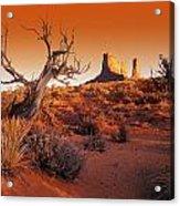 Dead Tree In Desert Monument Valley Acrylic Print